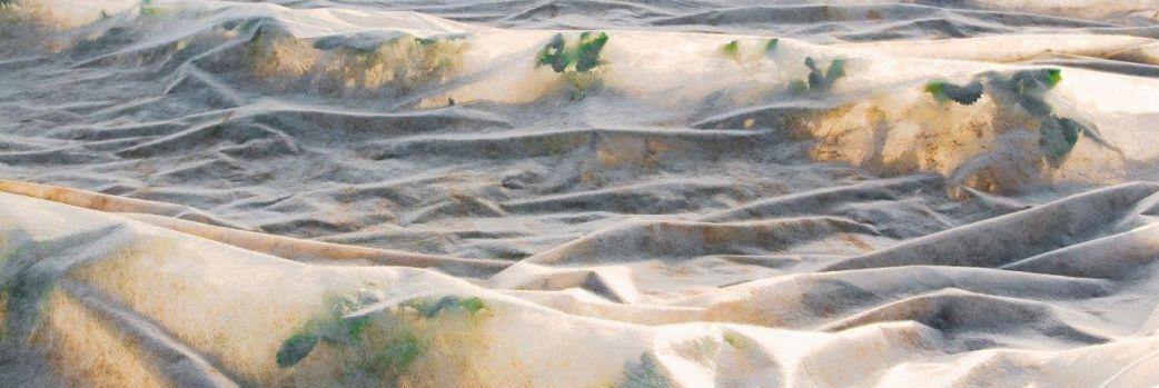 Agrowłókniny i agrotkaniny
