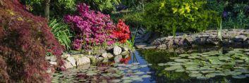 Sprawdź, jak można urządzić ogród