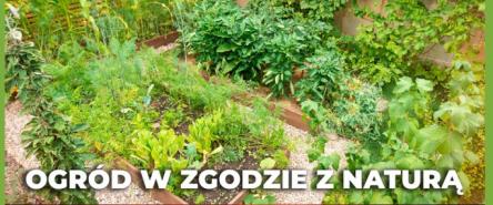 Ogród w zgodzie z naturą