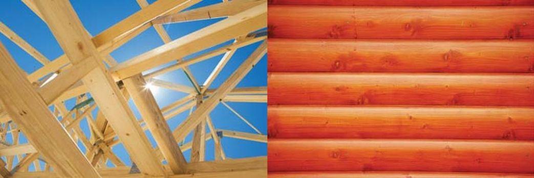 Drewniane oblicze domu