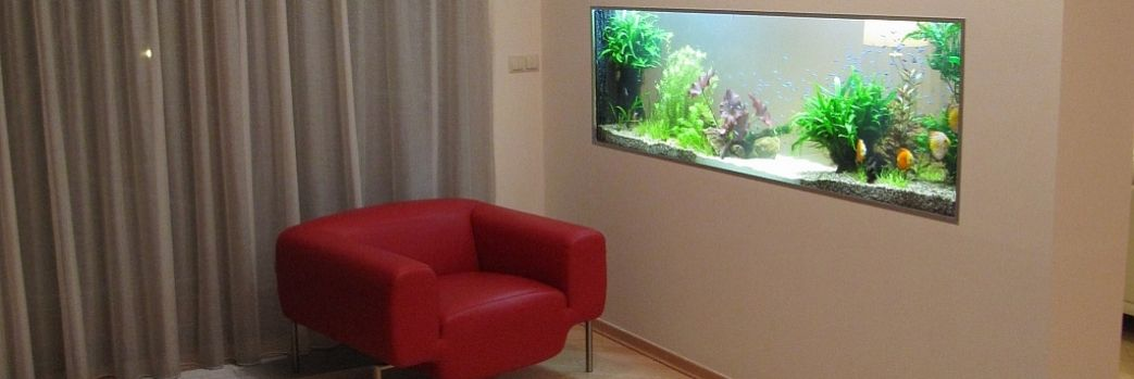 Designerskie akwarium