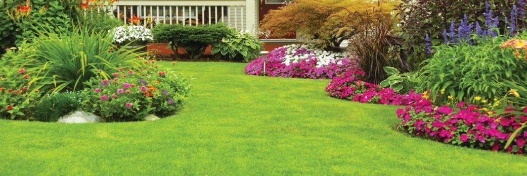 Narzędzia kreujące piękny ogród