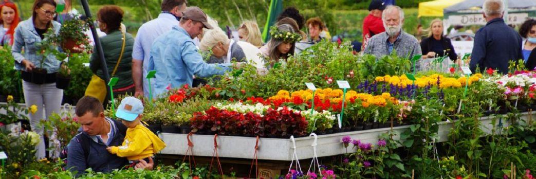 VI Kulinarny Festiwal Kwiatów Jadalnych już w lipcu!