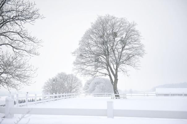 pacółtowo atrakcje zimowe
