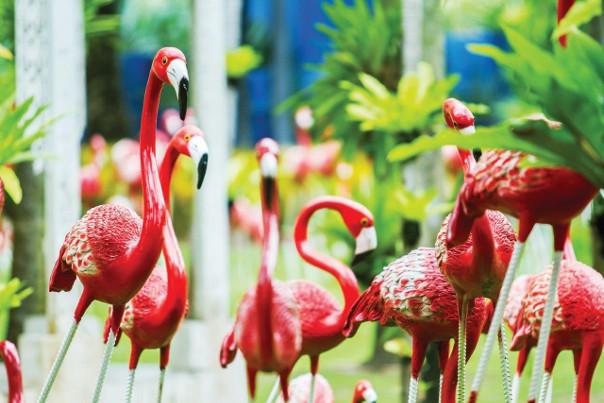 flamingi w ogrodzie