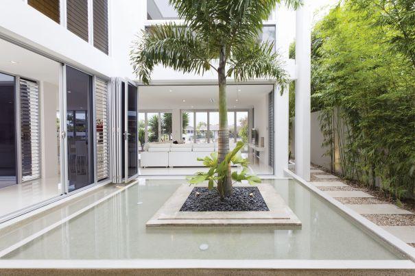 basen z palmą w ogrodzie