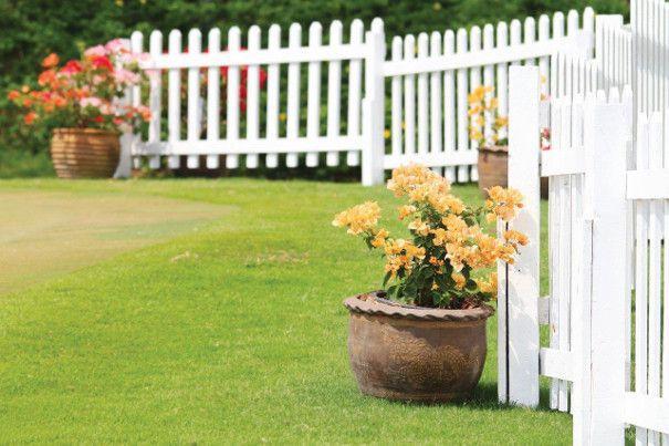 kwiaty w doniczkach przy ogrodzeniu