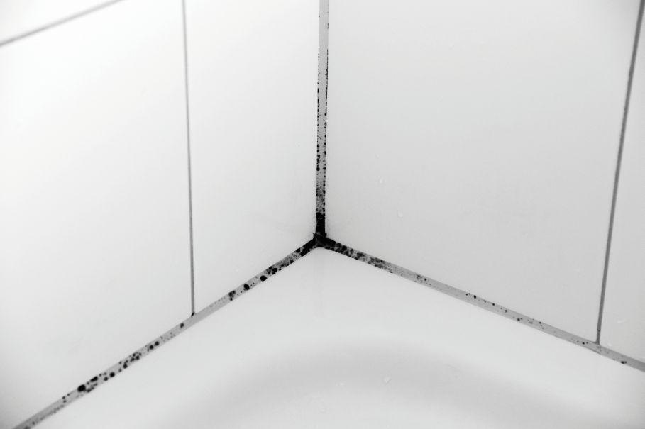 Jak Pozbyć Się Wilgoci W łazience Praktyczne Porady